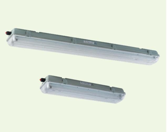 BnY81系列防爆荧光灯