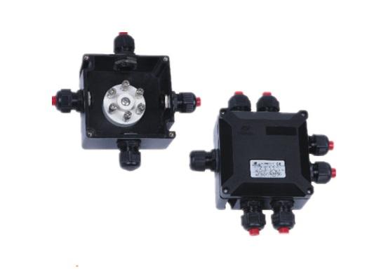 BXJ8050-20/6系列防爆接线盒