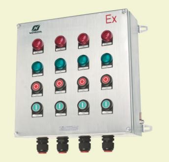 BXK 8061系列防爆防腐控制箱(ⅡC、tD)